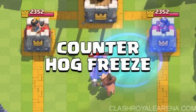 How to Counter Hog Freeze Combo